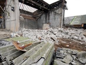 Demolition Survey